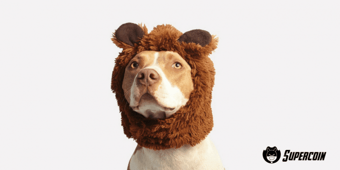 assicurazione cane, polizza animali domestici