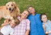 assicurazione capofamiglia, assicurazione capo famiglia